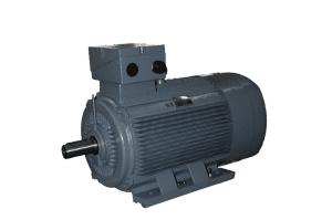 IE1 Cast Iron Motors